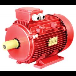 Kaltes elektromotors GM 3kW 4P 100L